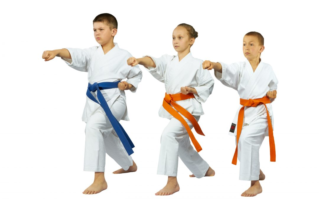 Karate Classes Start October 31